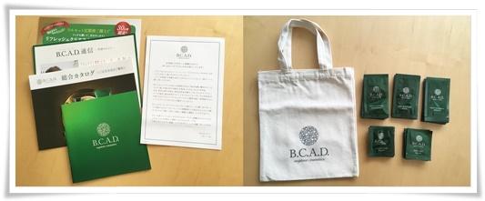 bcad007-1