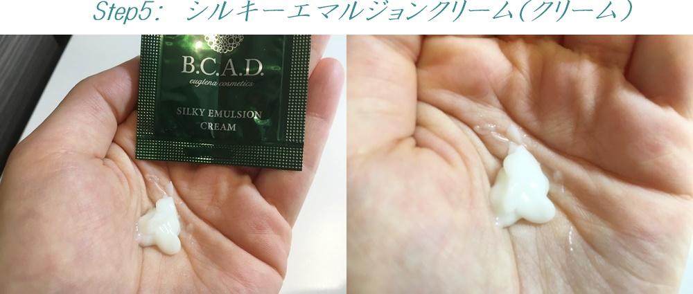 bcad_Step5